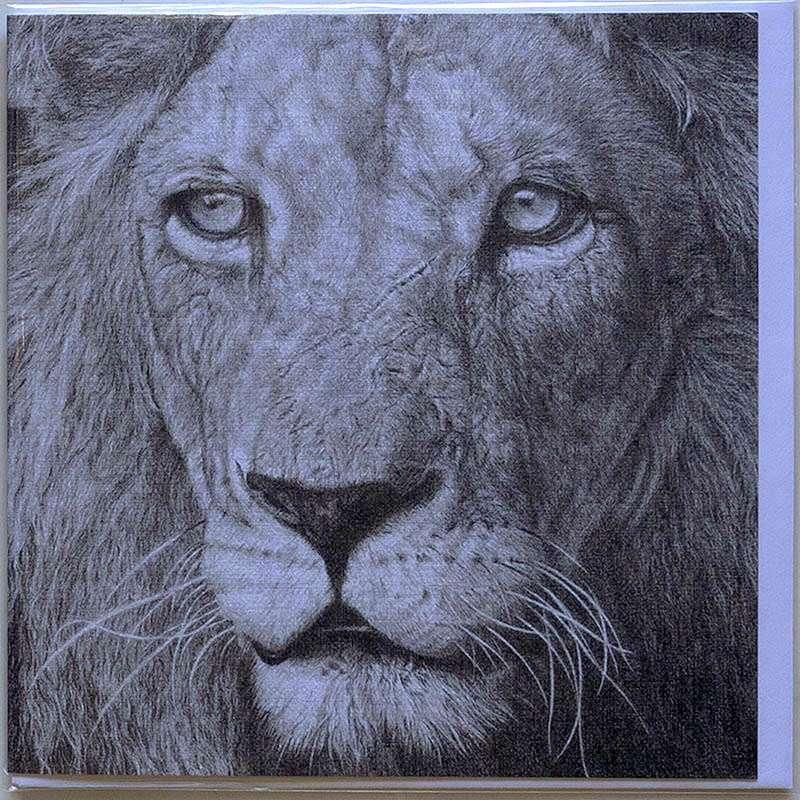 Lion card front