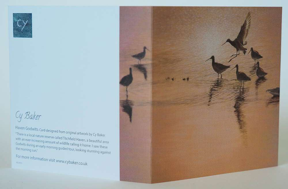 Haven Godwits card front and back