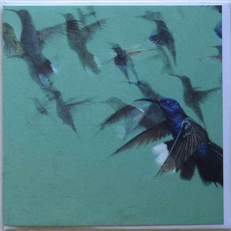 Hummingbirds card front