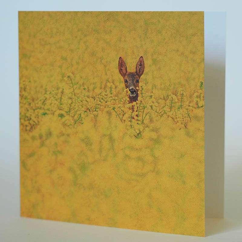 Roe Deer in Rapeseed card