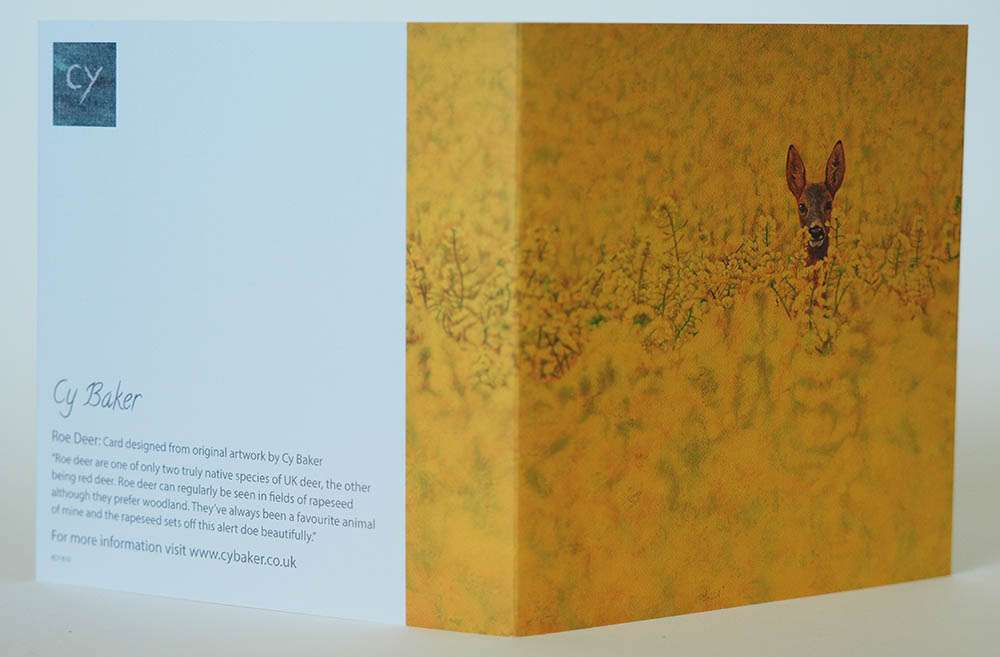 Roe Deer in Rapeseed card front and back