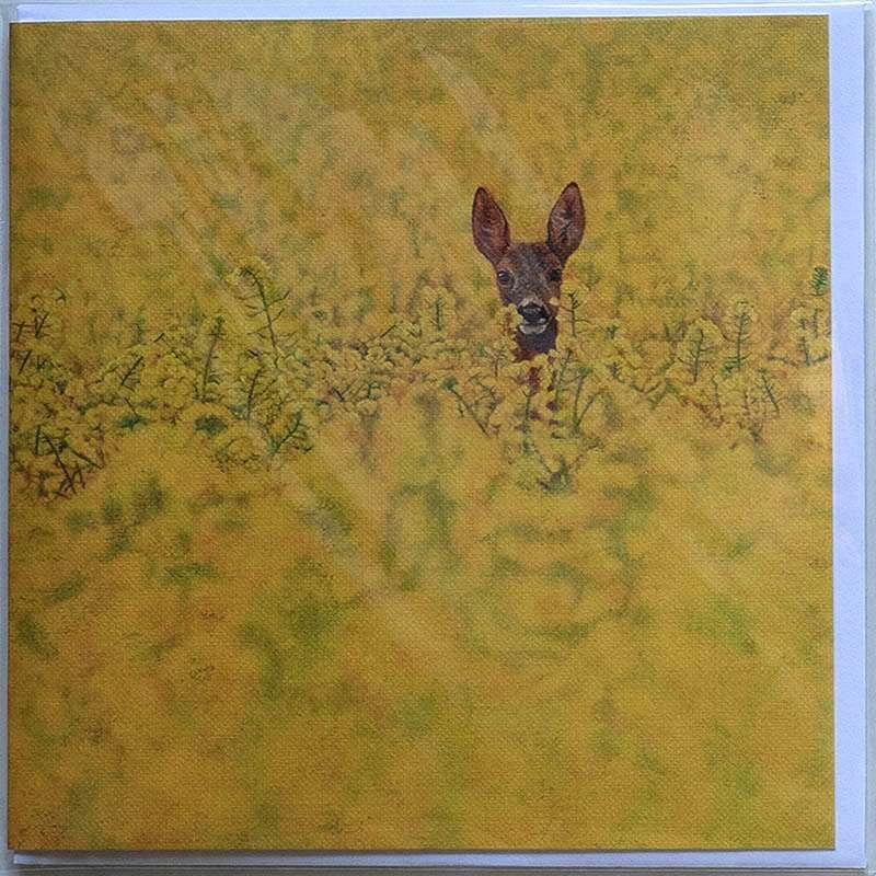 Roe Deer in Rapeseed card front