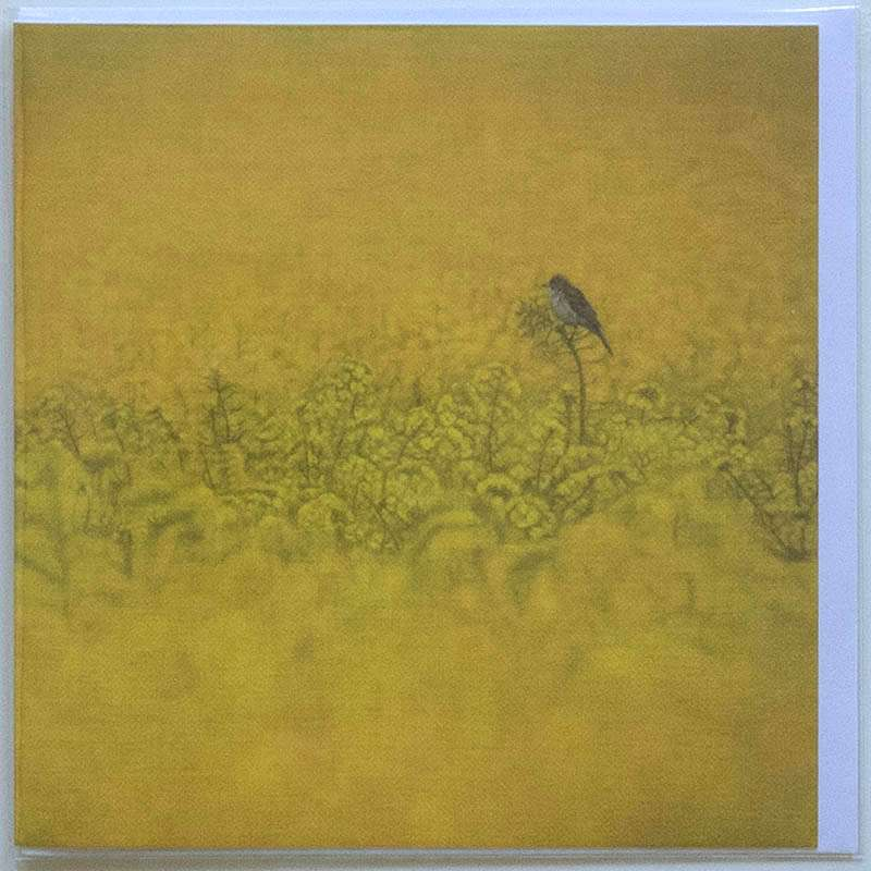 Field of Gold card front