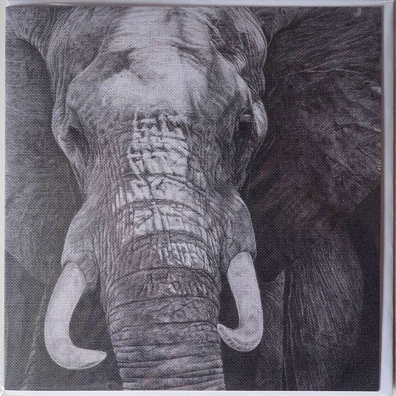 Front of the elephant card