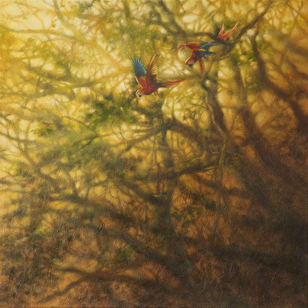 Scarlet Macaws artwork