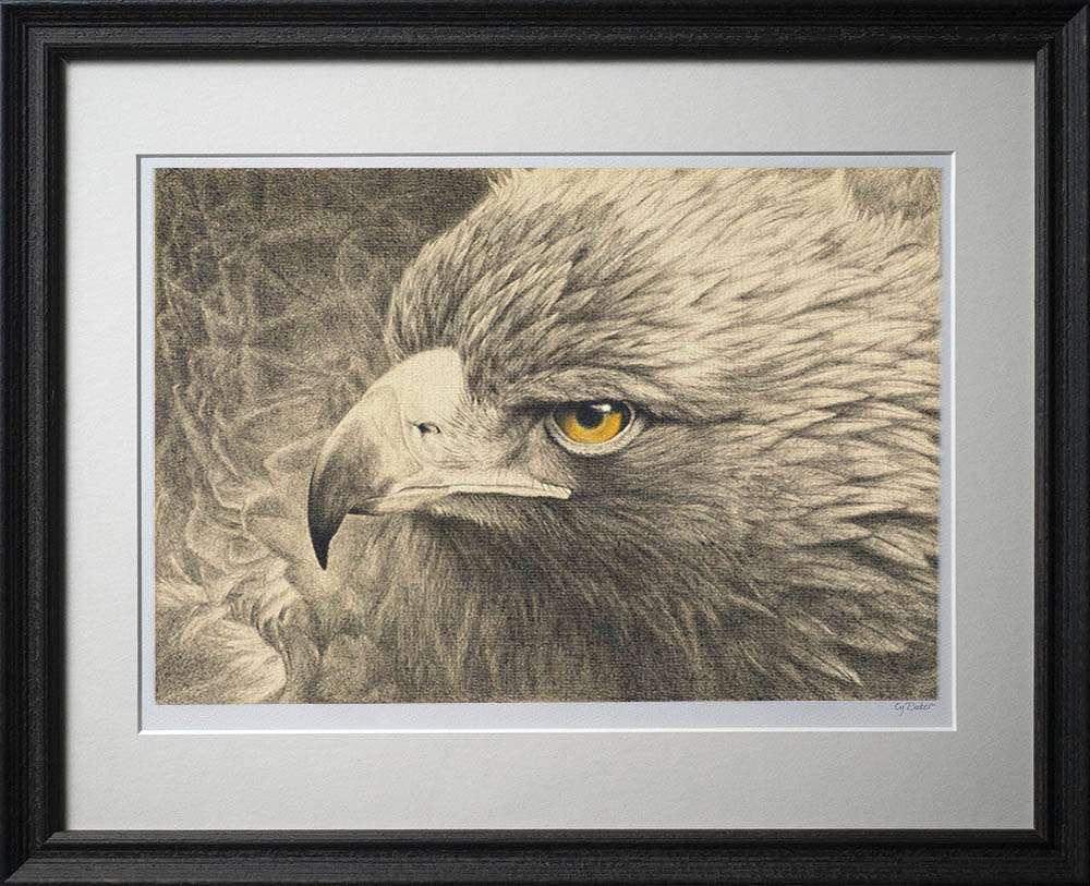 Golden Eagle print in dark frame