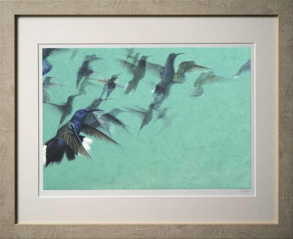 Hummingbirds print in light frame