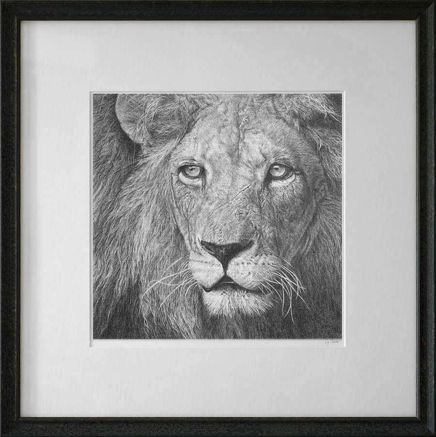 lion print in dark frame