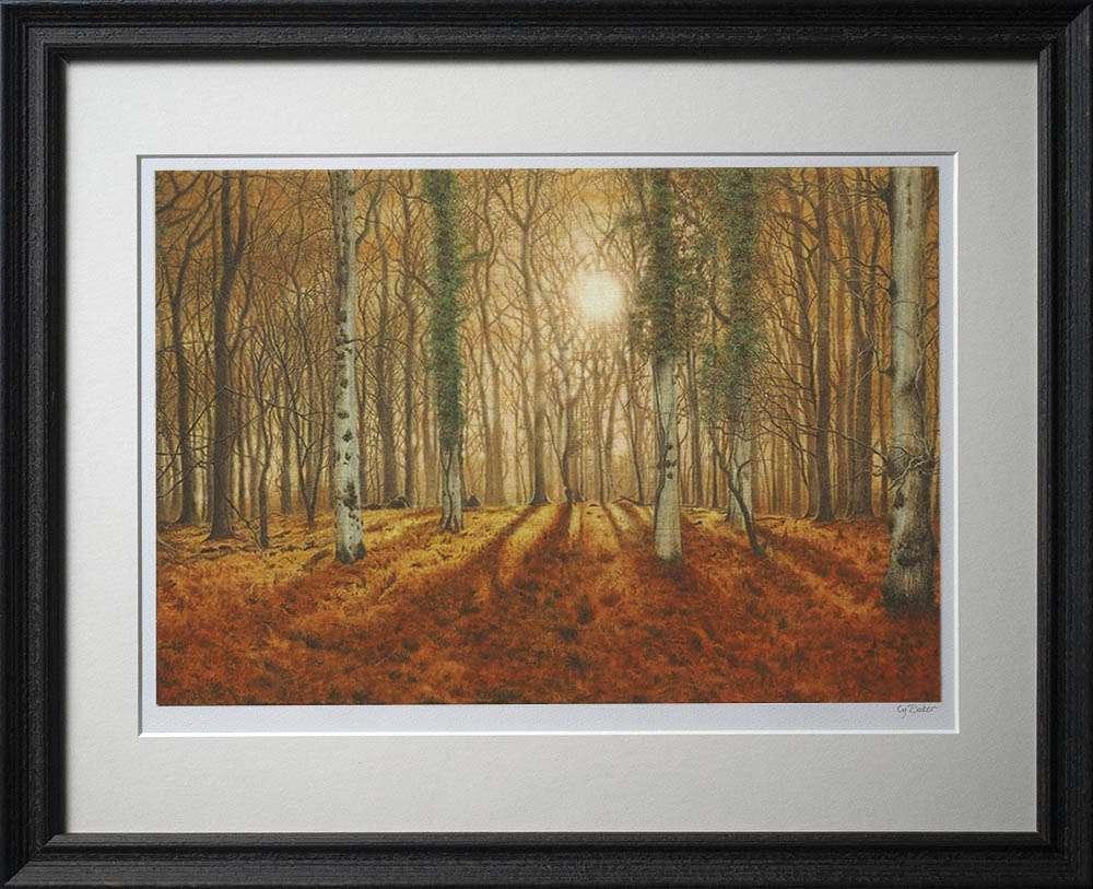 New Forest Morning print in dark frame