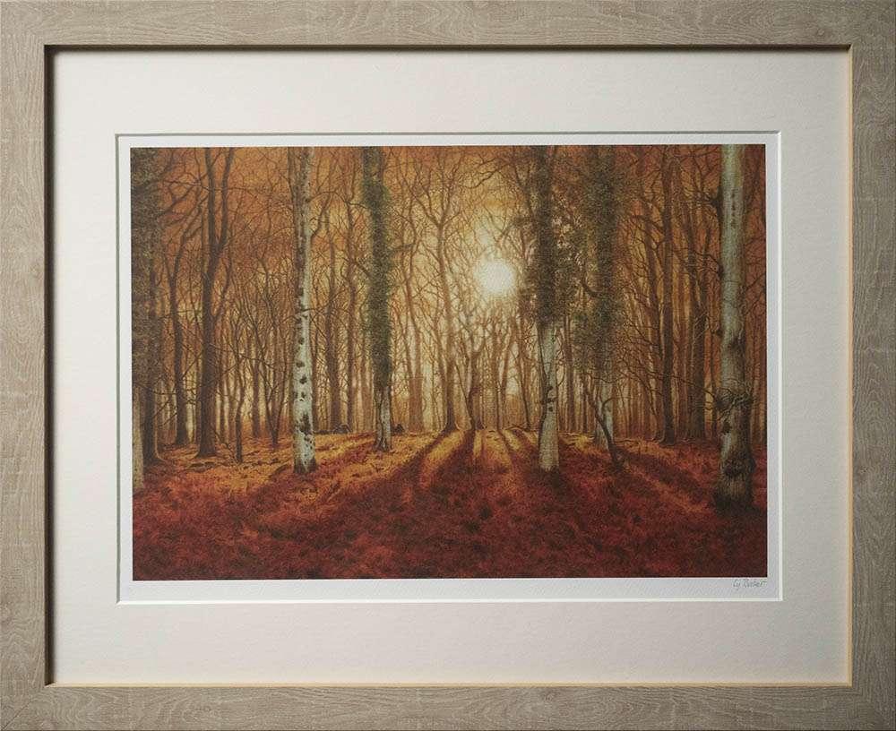 New Forest Morning print in light frame