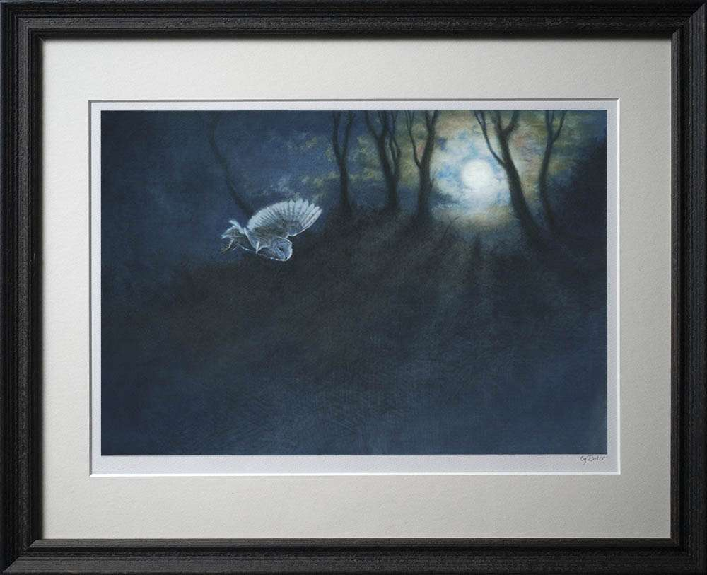 Night Owl print in dark frame