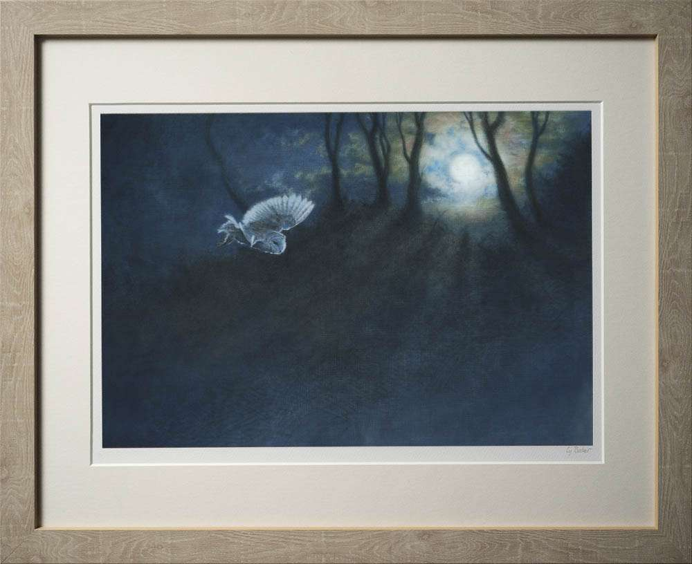 Night Owl print in light frame