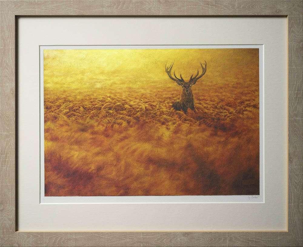 Red deer in bracken print in light frame