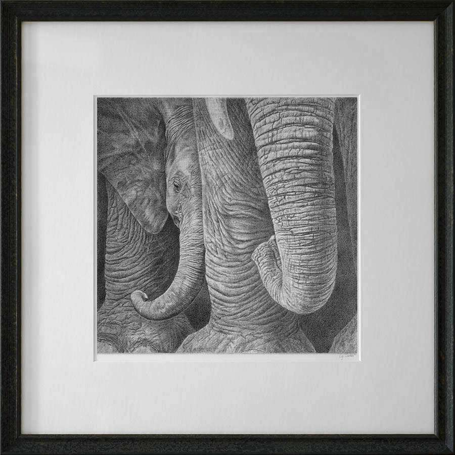Baby elephant print in dark frame