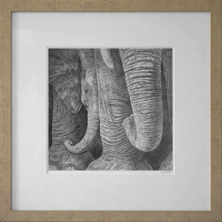 Baby elephant print in light frame