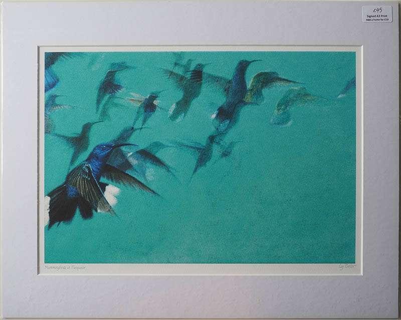 Unframed Hummingbirds print