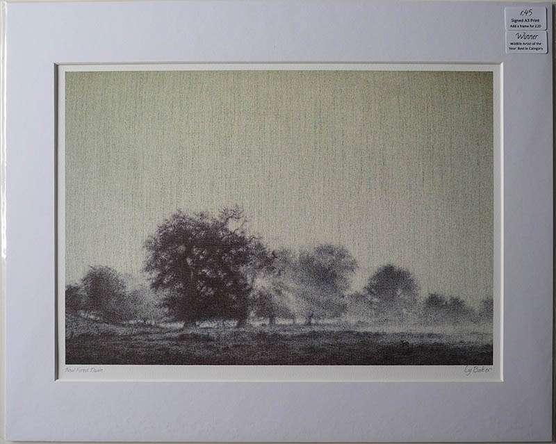 New forest dawn unframed print