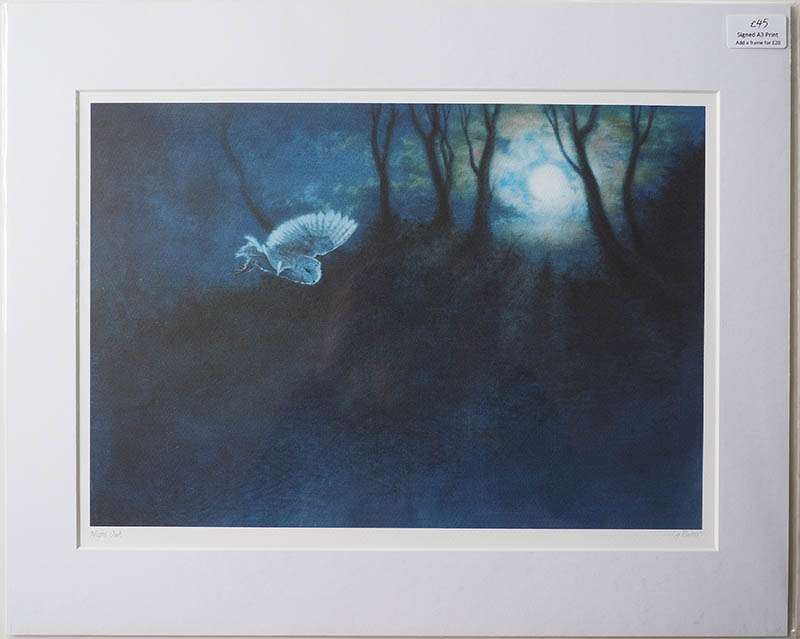 Unframed print of Night Owl