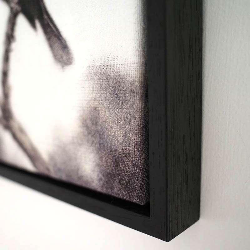 Original framed chaffinch corner