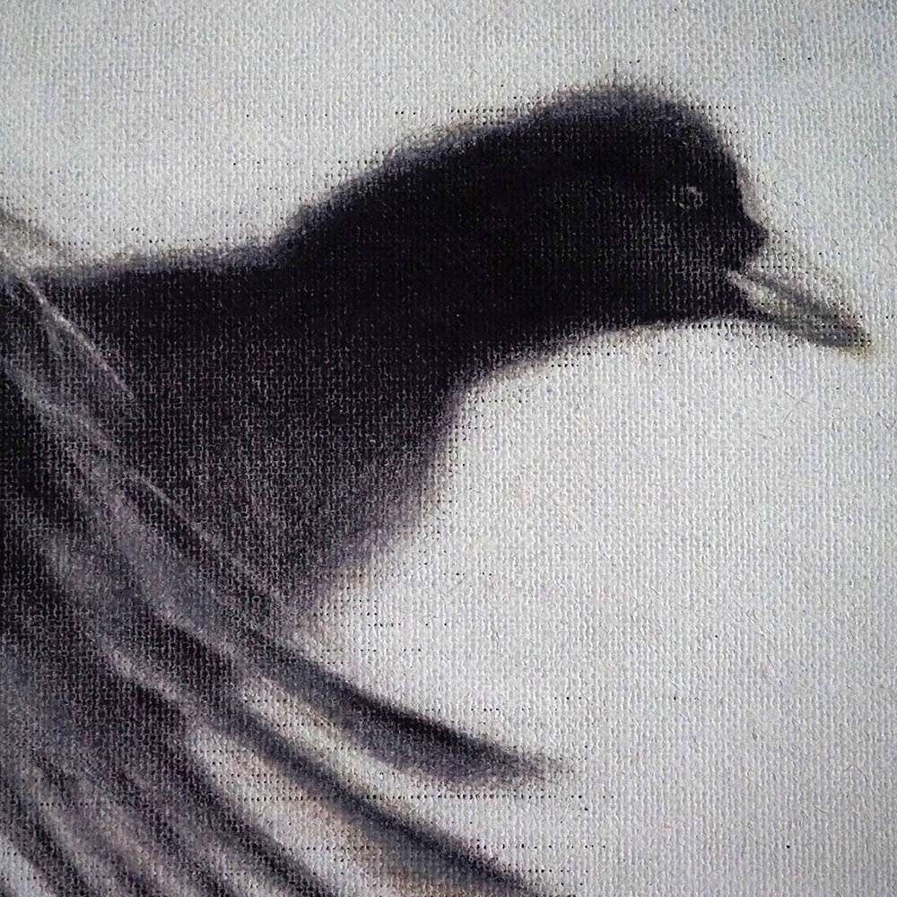 Original framed Coot detail