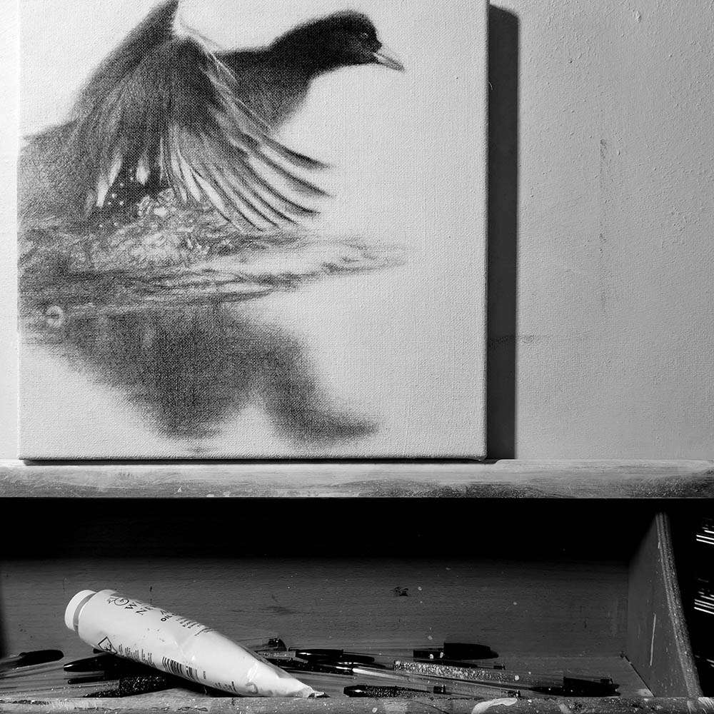 Original framed Coot at work