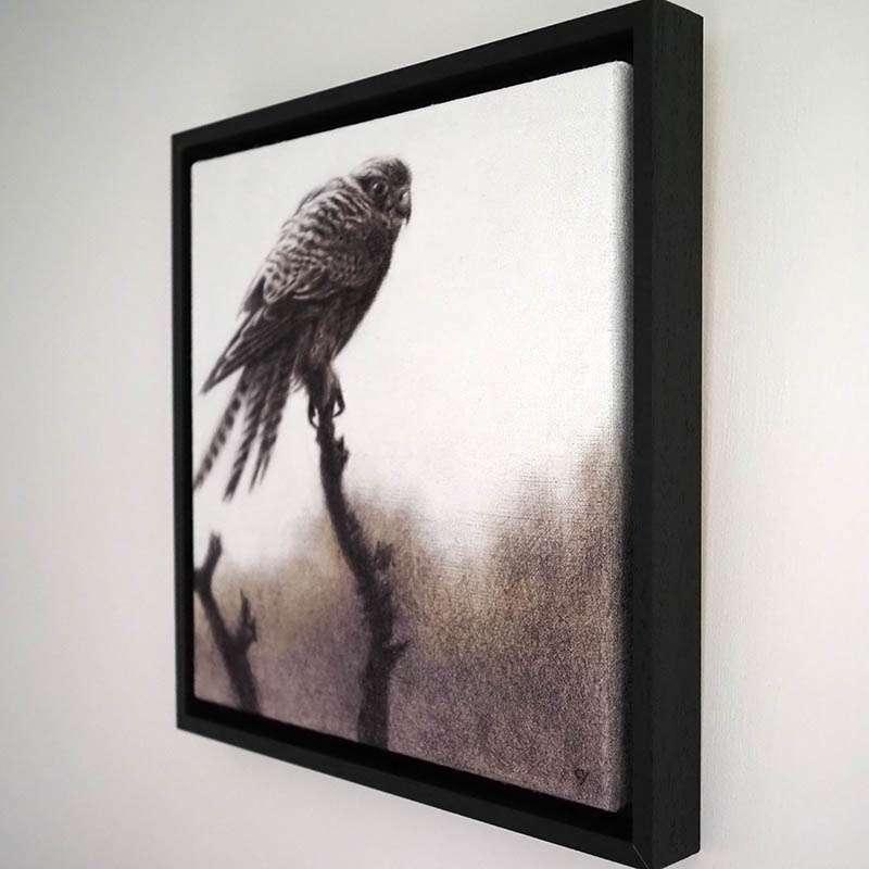 Original framed kestrel