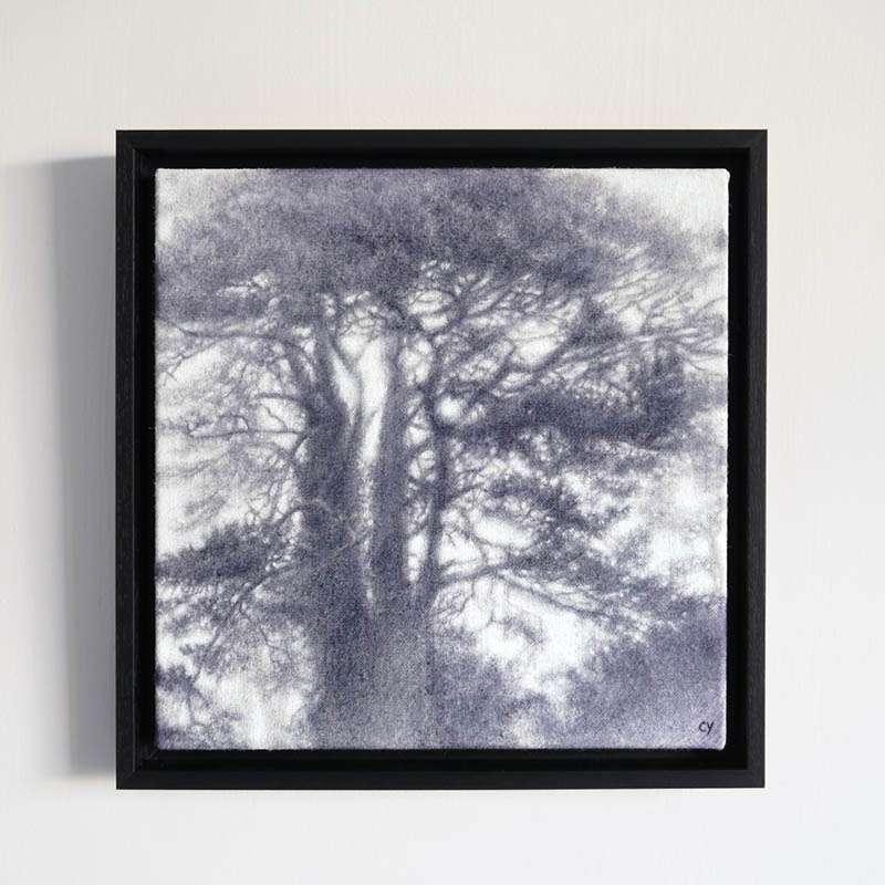Original framed Scots Pine wall art